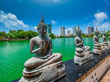Viajes en Grupo a Sri Lanka