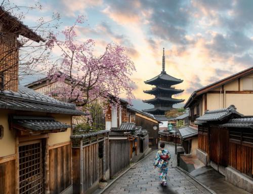 JAPÓN, un mundo de contrastes