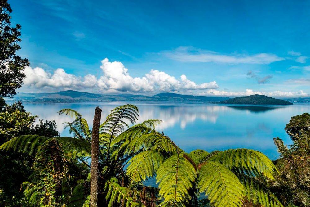 Viajar a Nueva Zelanda-lago-rotorua