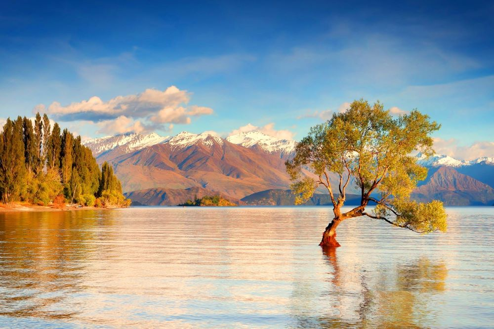 Viajar a Nueva Zelanda-lago-wanaka