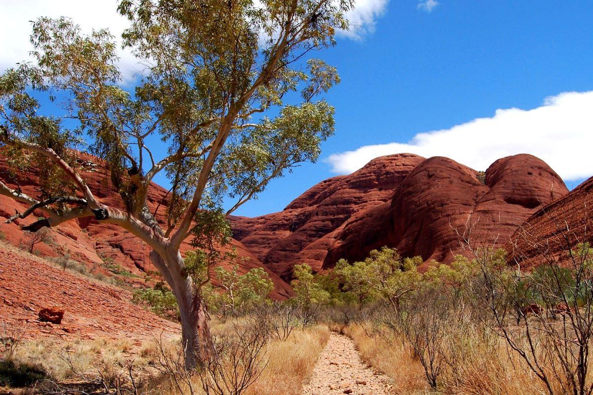 Viajar a Australia-dinner-valley-of-the-wind