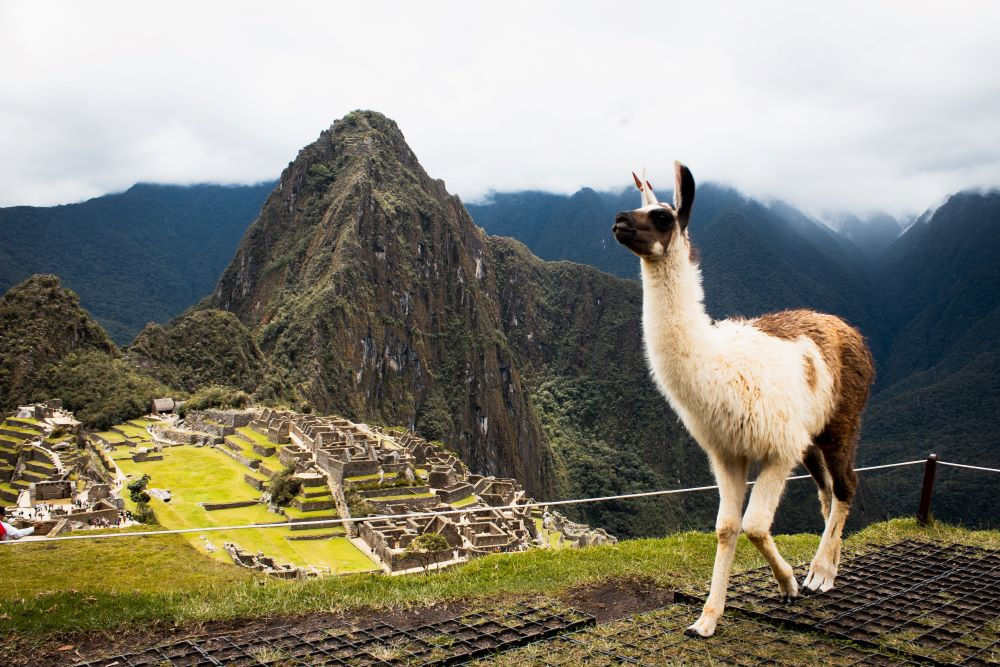 Viajar a Perú-machupichu