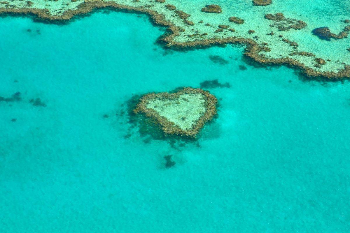 Viajar a Australia-gran-barrera-coral