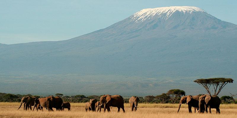 Viajes en Grupo a Kenia