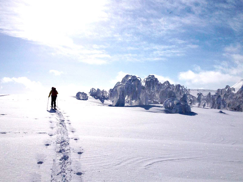 Nuba Everywhere. Viajes de Ski Road trip Hokkaido