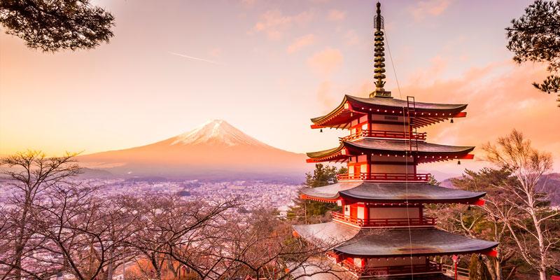 Japon Milenario con Nuba Everywhere