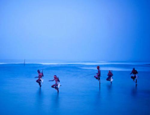 Sri Lanka, el mejor plan para este Verano