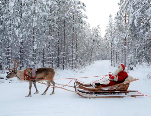 LAPONIA. Fin de año finlandés