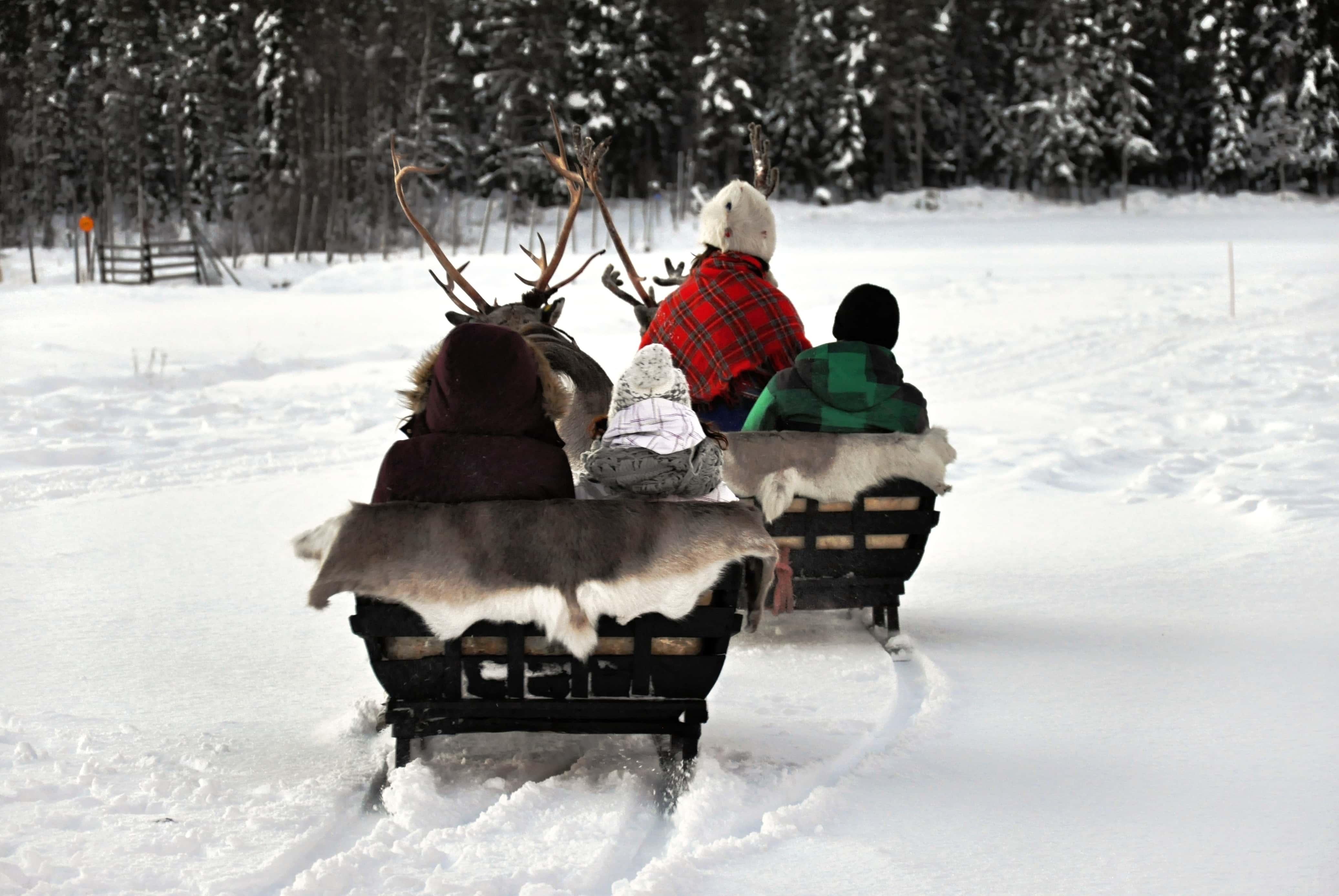 Ruka. En familia a Laponia.NUBA everywhere. Granja de renos