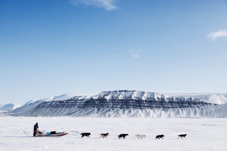 La gran experiencia polar. Ártico noruego. NUBA Everywhere. Trineo de perros