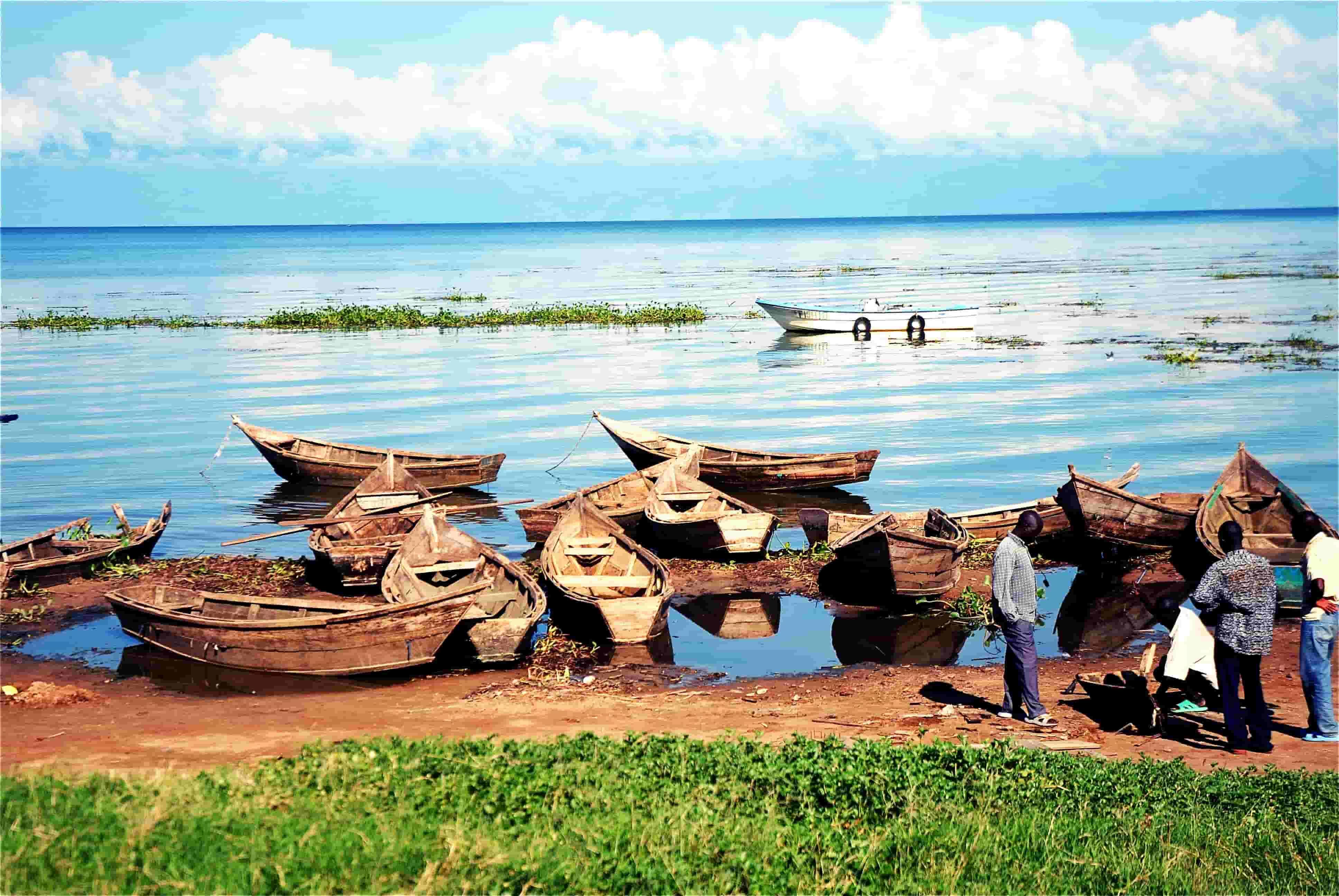 La aventura familiar para fin de año. Kenia. NUBA Everywhere. Lago Victoria