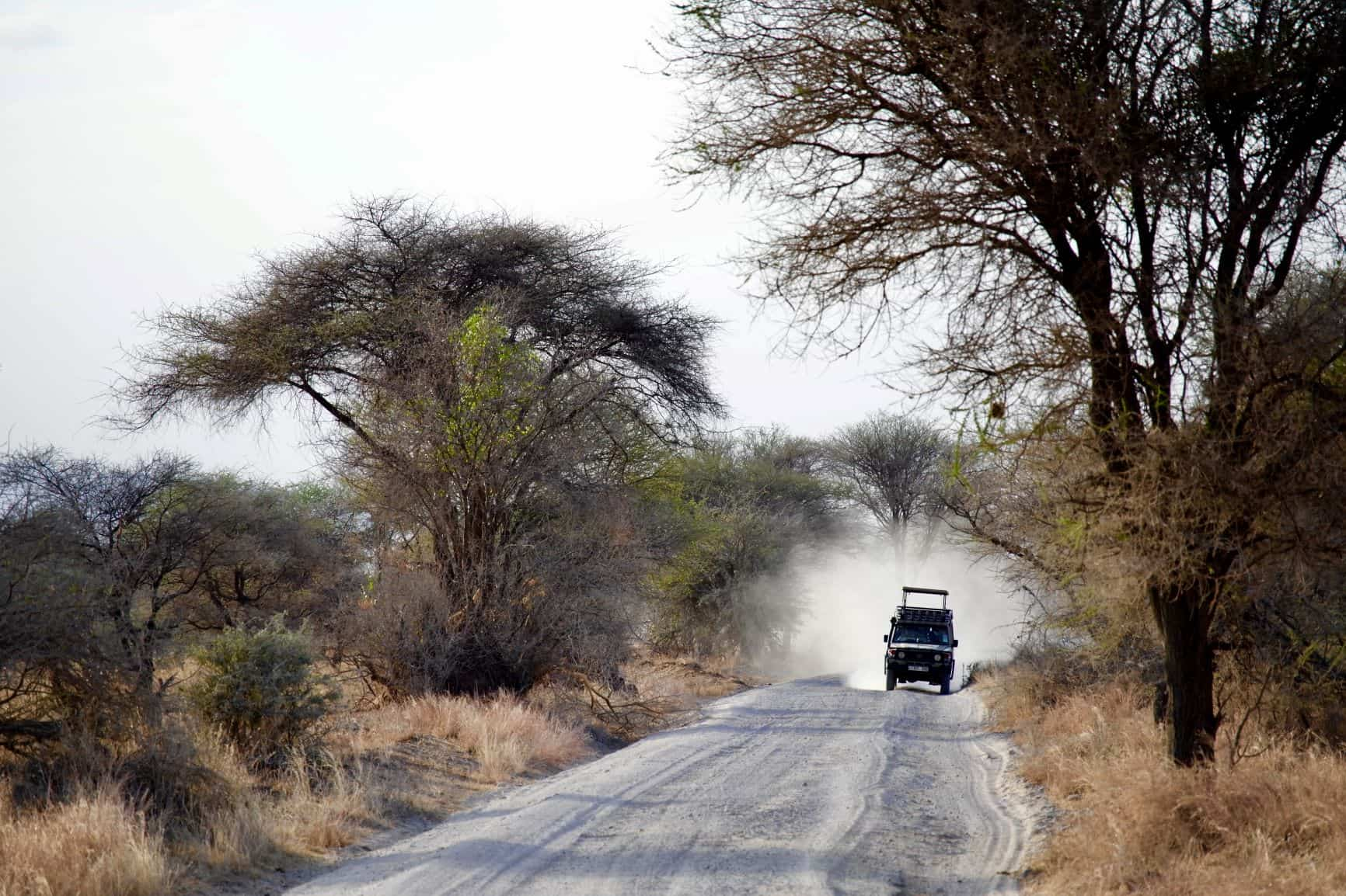 La aventura familiar para fin de año. Kenia. NUBA Everywhere. Masai mara en 4x4