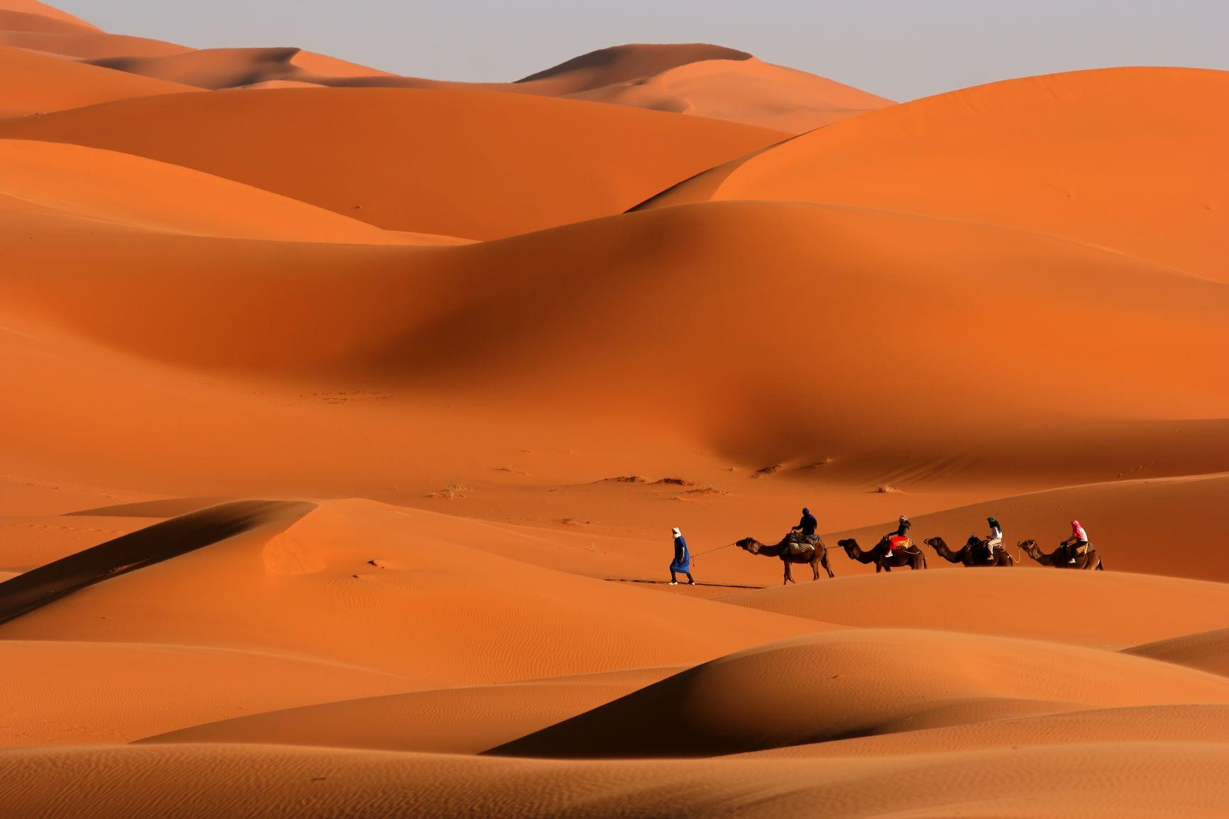 Marrakech. Lujo gastronómico. Nuba everywhere. Caravana de camellos