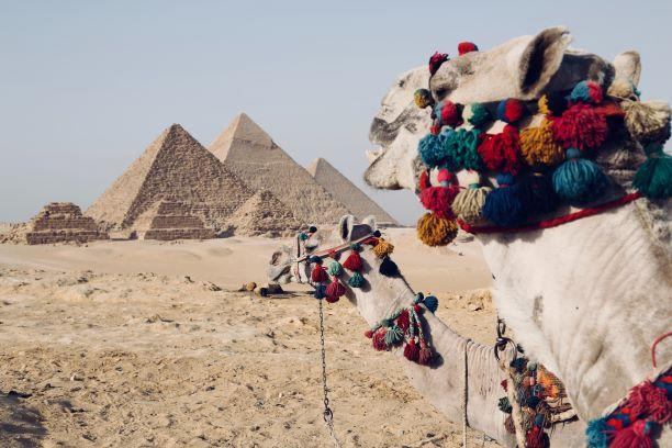 Tierra de faraones. Egipto. NUBA everywhere. Pirámides
