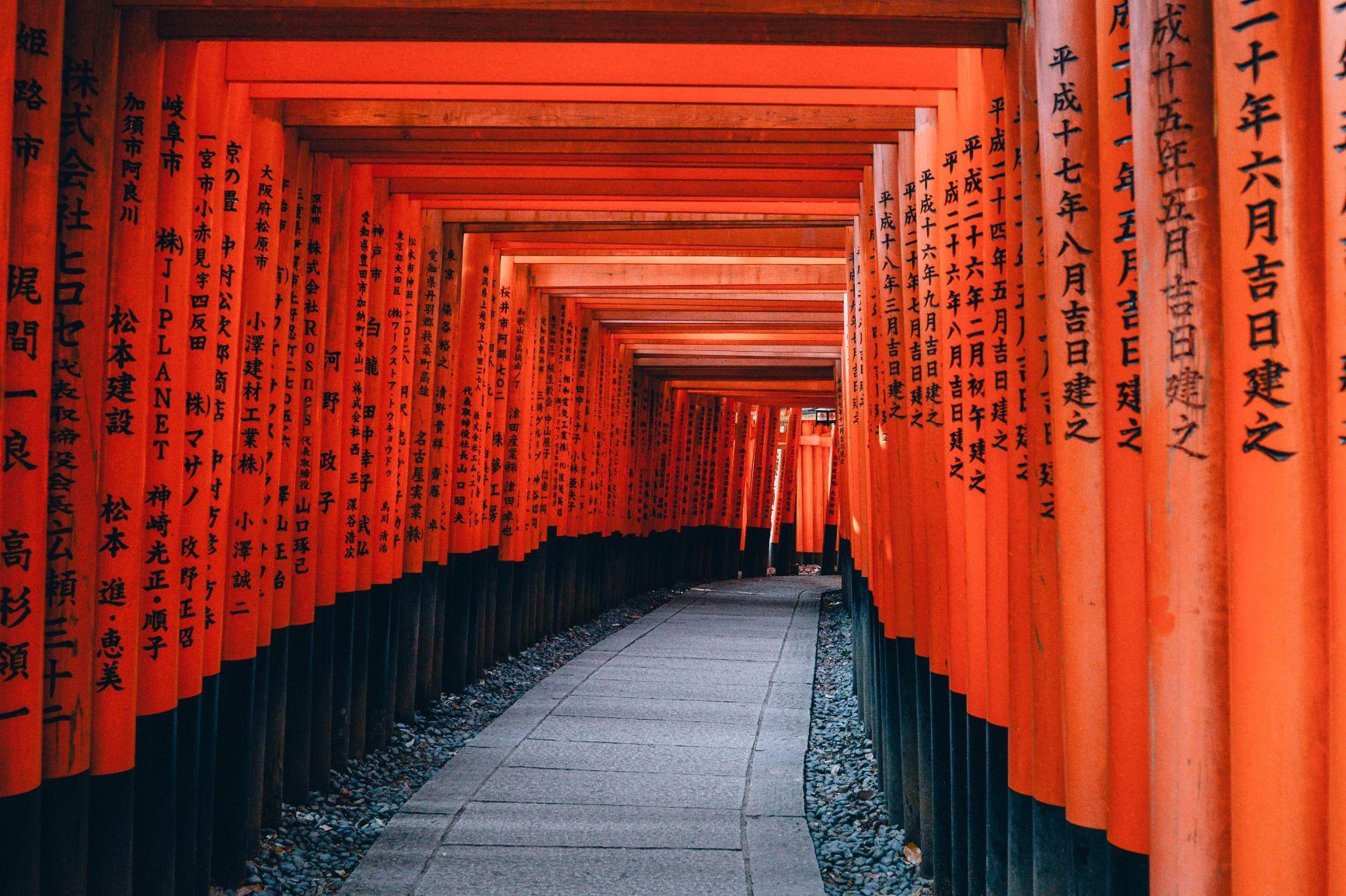 Geishas y samurais. Japón. NUBA everywhere. Santuario Fuhimi Inari y puertas torii