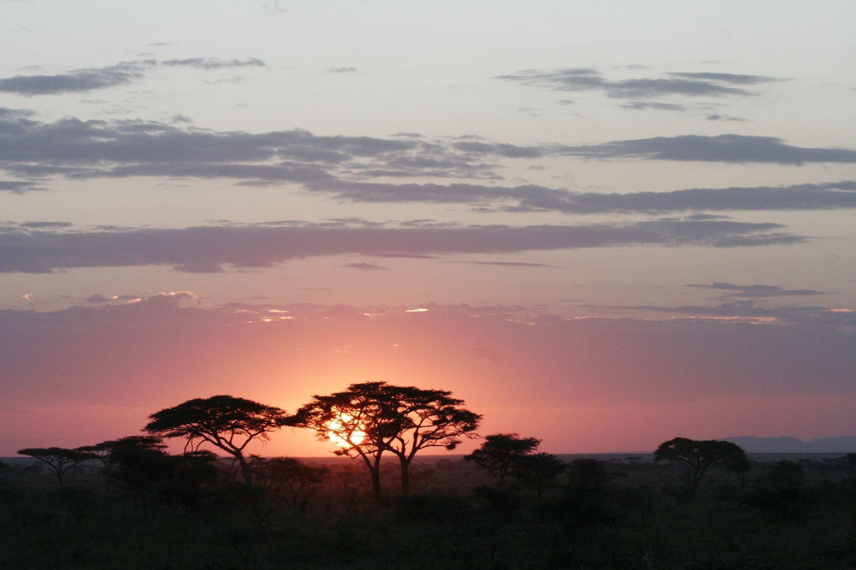 El corazón de África. Tanzania. NUBA everywhere. Atardecer