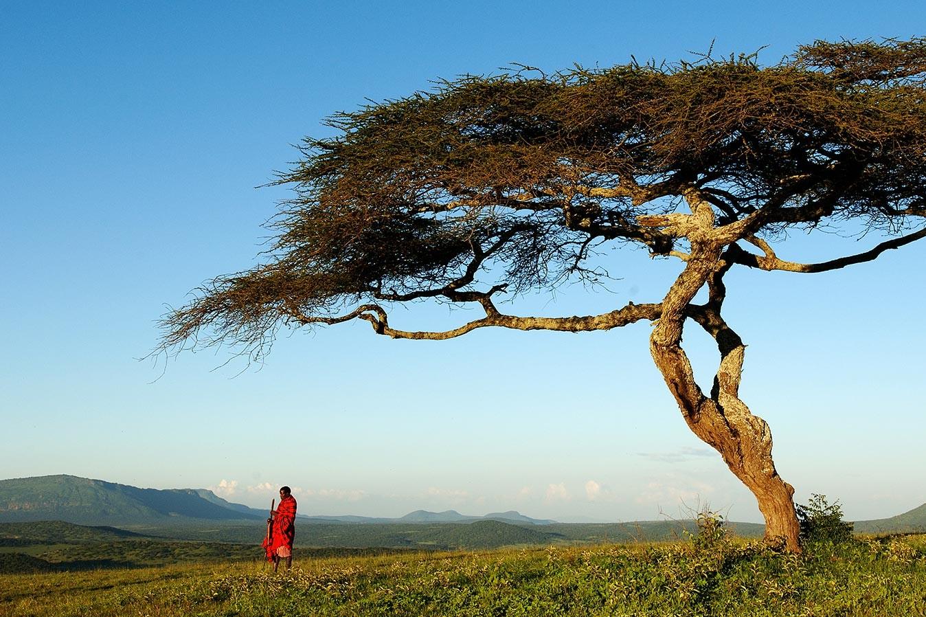El corazón de África. Tanzania. NUBA everywhere. Karatu Masai