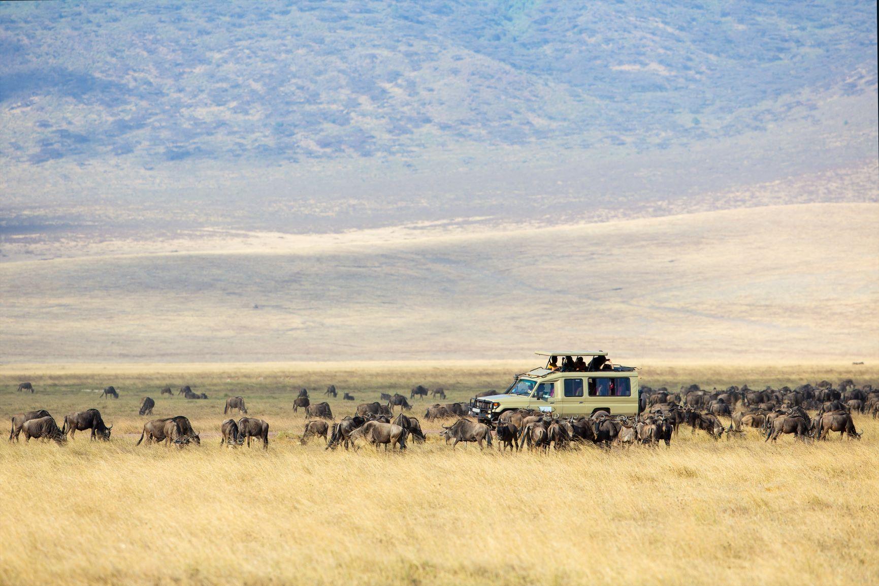 El corazón de África. Tanzania. NUBA everywhere. Ngorongoro zona de conservación