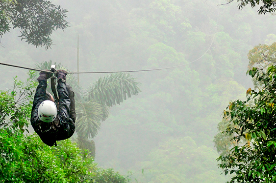 Costa Rica. En busca de las mariposas. NUBA everywhere. Monteverde actividades