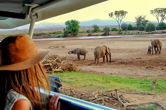Kenia. Visita a la tribu Masai. NUBA everywhere. Safari elefantes Kenia chica