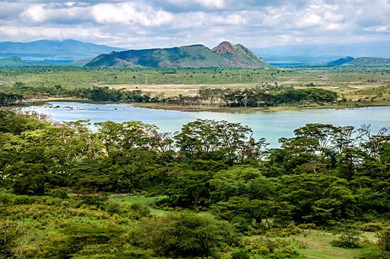 Kenia. Visita a la tribu Masai. NUBA everywhere. Masai Mara