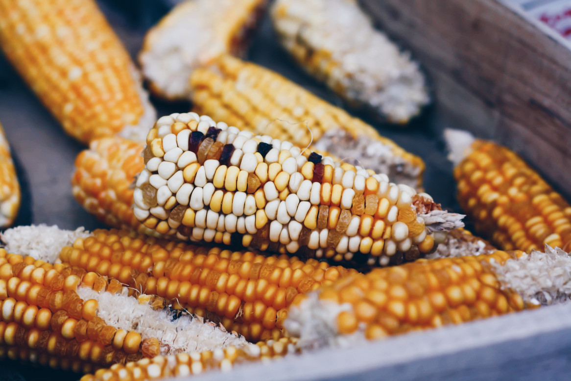 Viaje Guatemala-atitlan-maiz
