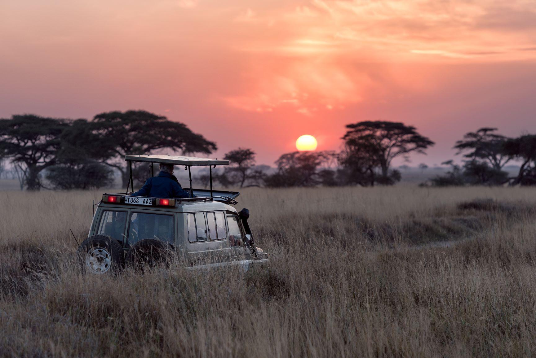 Viaje Kenia y Zanzibar-safari
