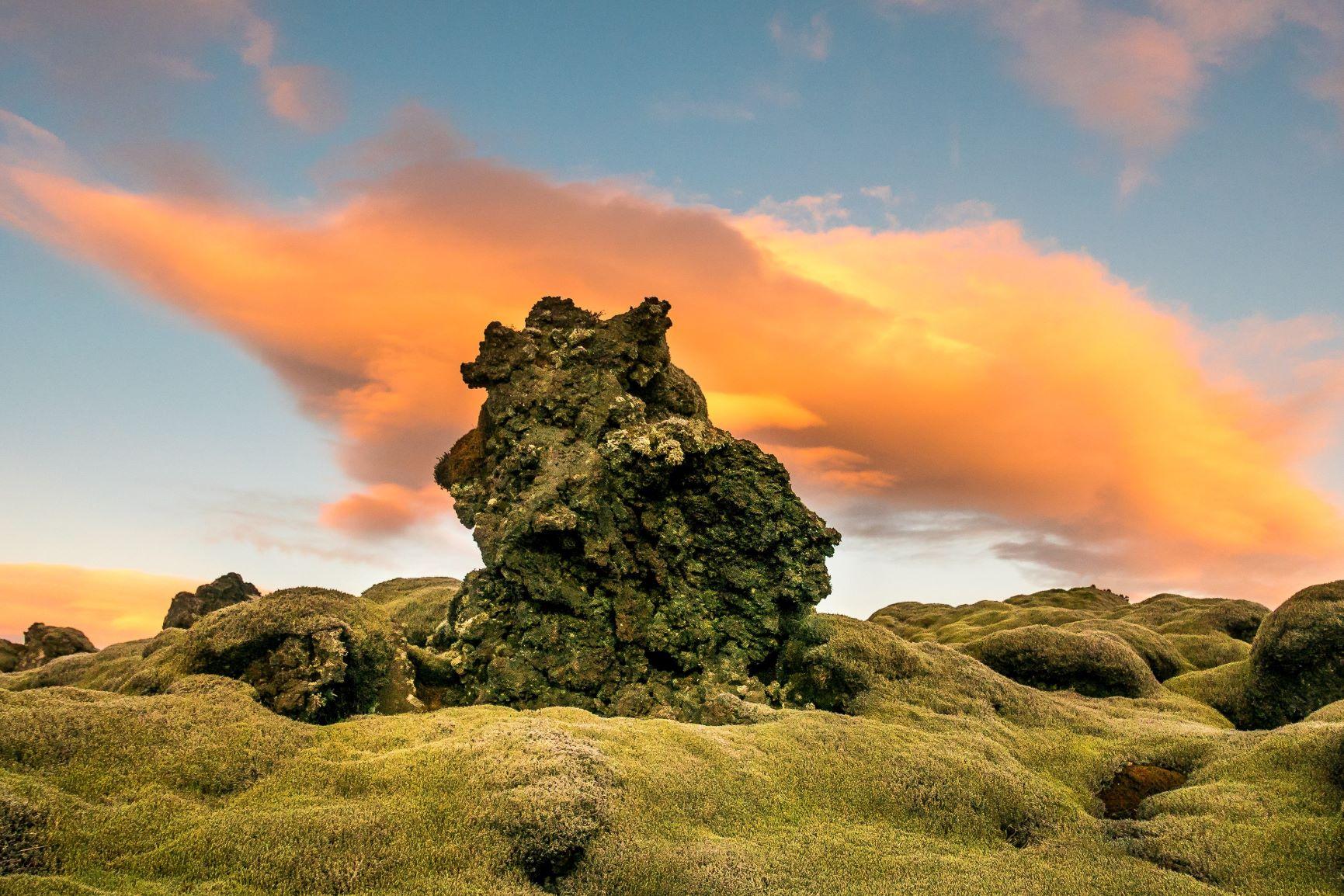 Viaje Islandia-overgrown_mossy_volcanic_rocks