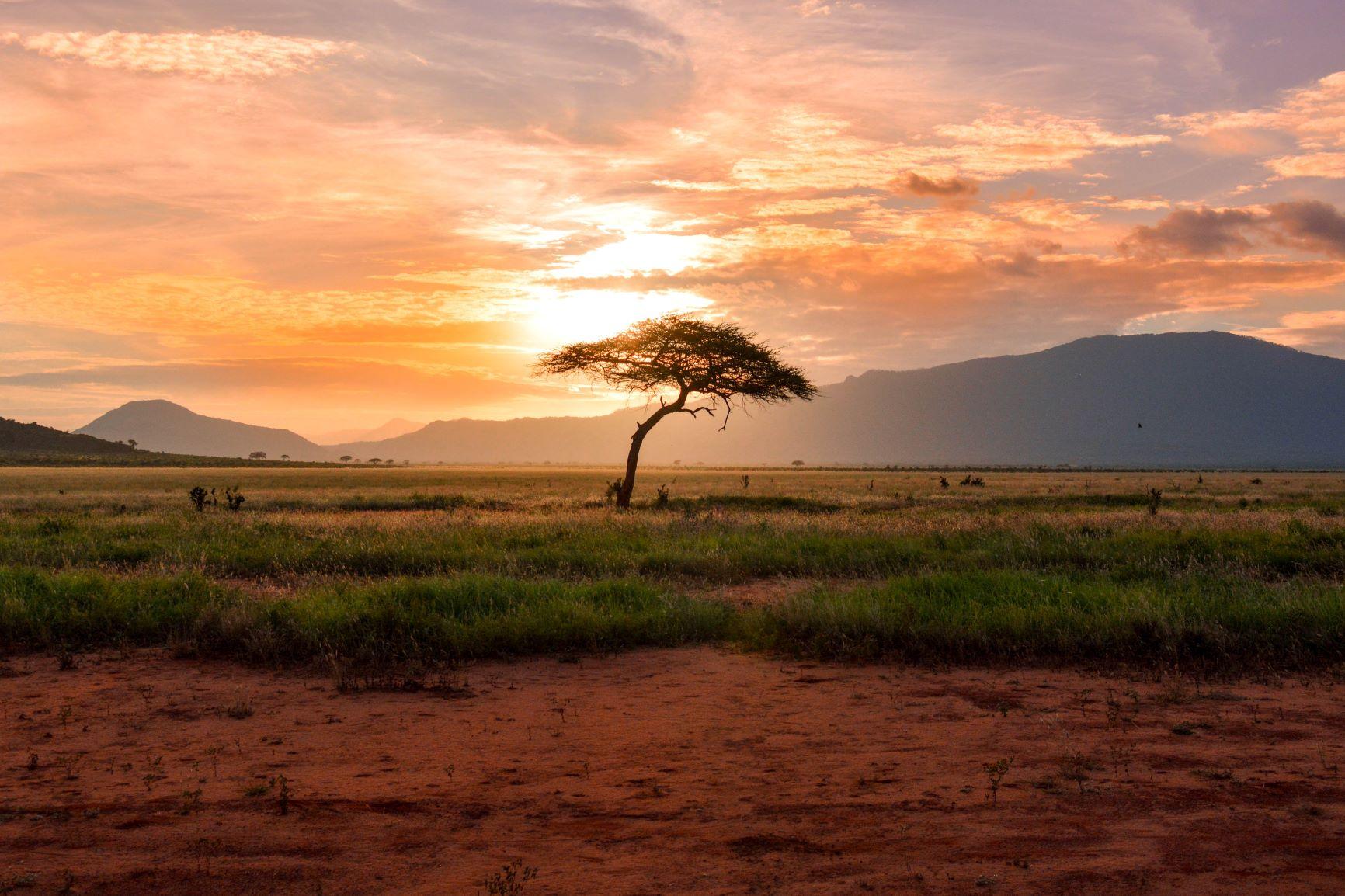 Viaje Kenia y Zanzibar-tsavo-east-national-park