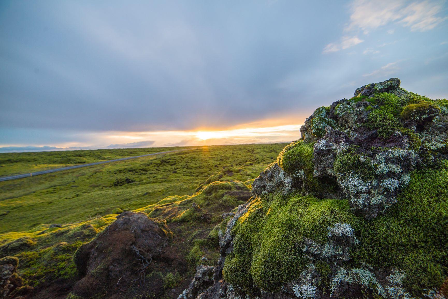Viaje Islandia-vik