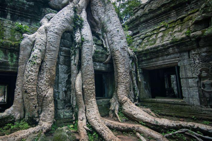 Viaje Camboya-siem-reap-angkor-wat