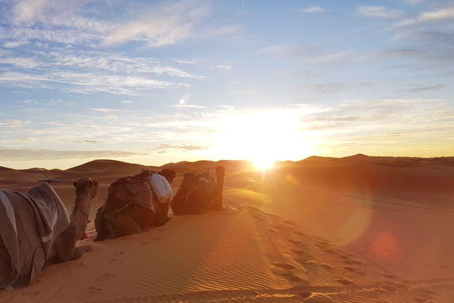 Viaje Marruecos Reyes Magos-amanecer-sahara