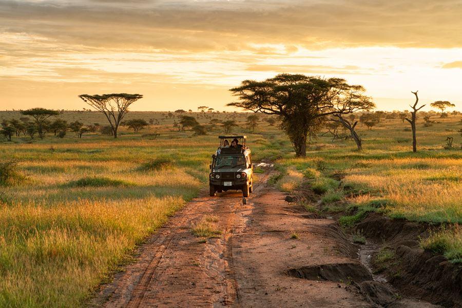 Viaje Kenia y Tanzania-4x4-safari