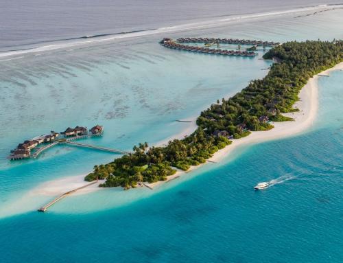 MALDIVAS. Un paraíso tropical
