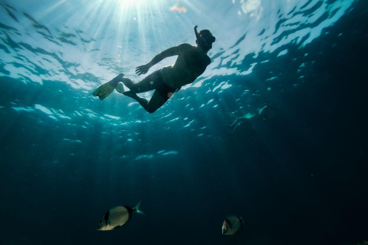 Viajar a Seychelles-underwater