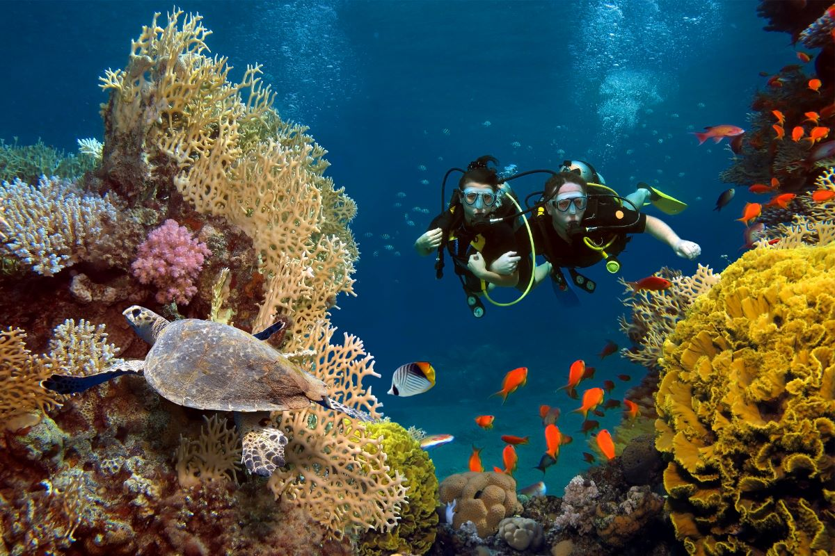 Viajar a Seychelles-pareja-en-corales