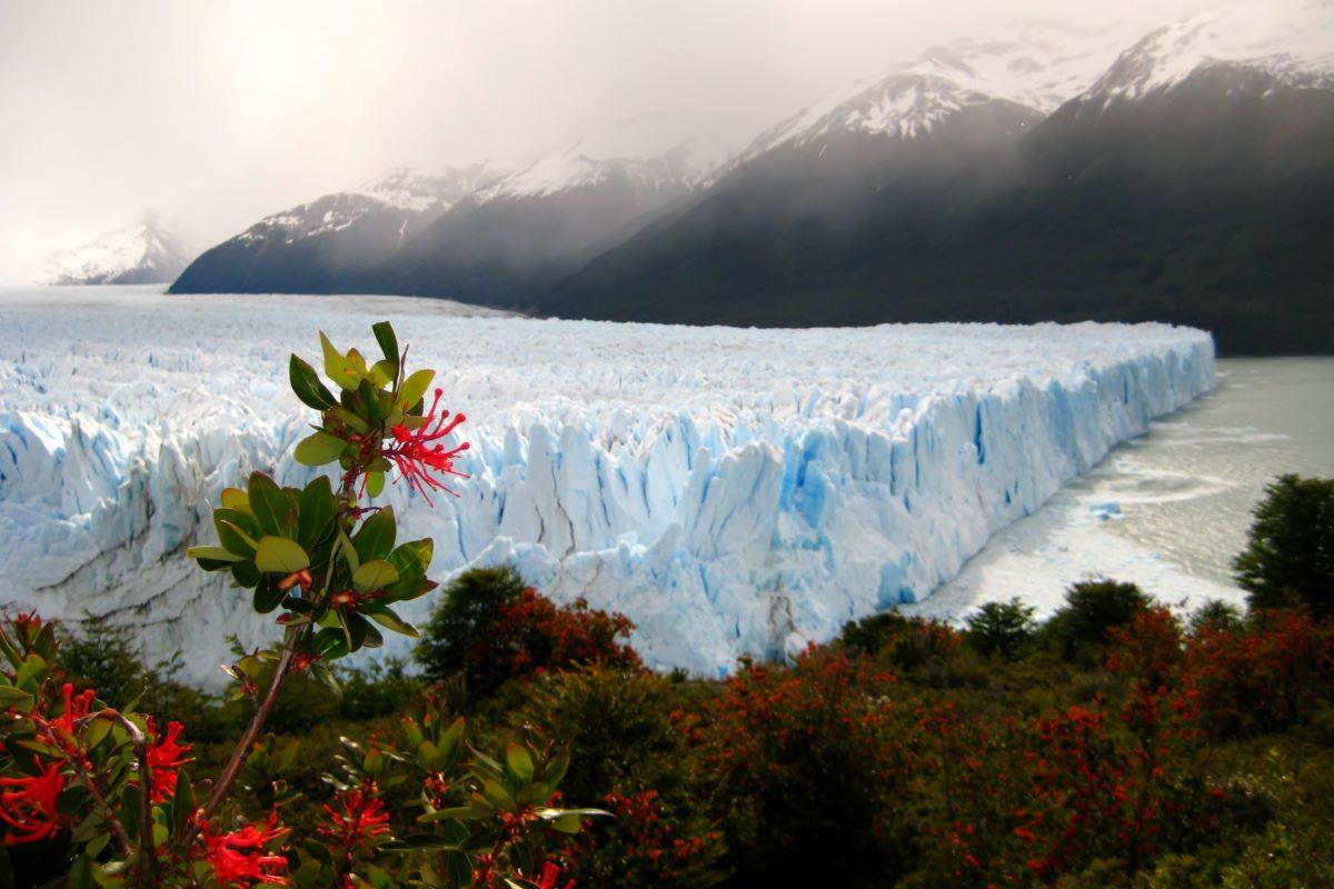 Viajar a Argentina-glaciar-perito-moreno2