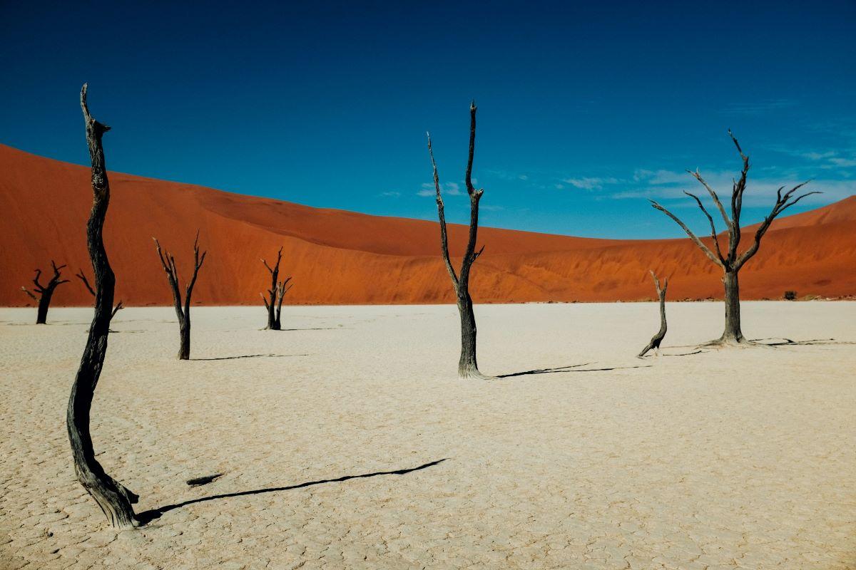 Viajar a Namibia-dead-vlei-sossusvlei