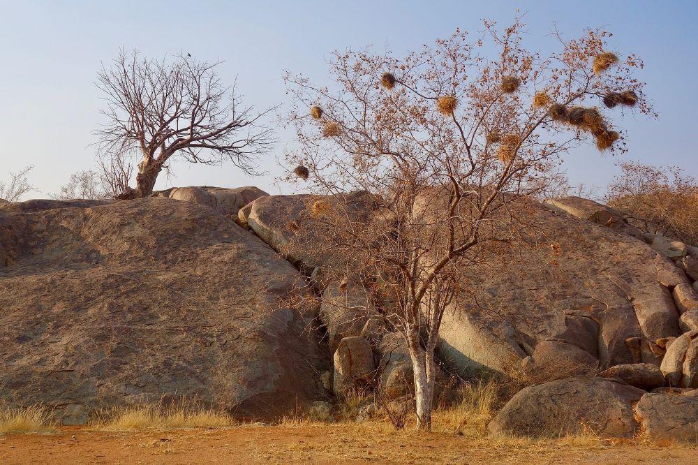 Viajar a Namibia-damaraland