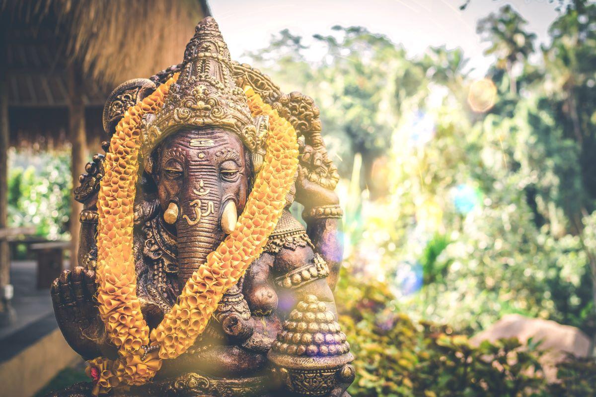 Viajar a Bali-elefante