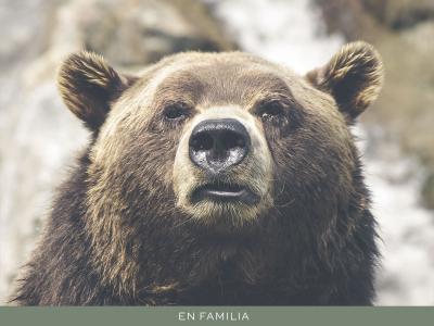 Viajar en familia -Canada-post