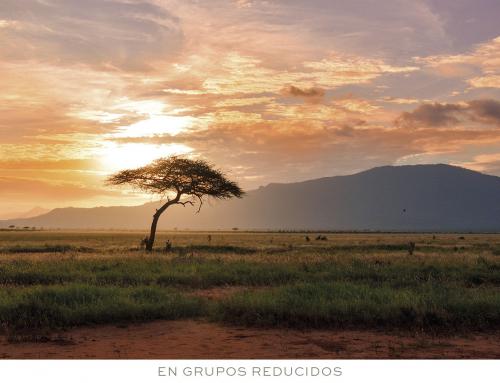 KENIA. Alma y color