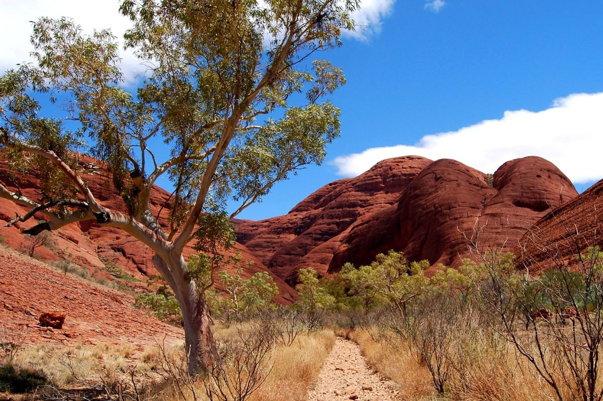 Viajar a Australia esencial-valley-of-the-wind-walk-olgas-kata-tjuta