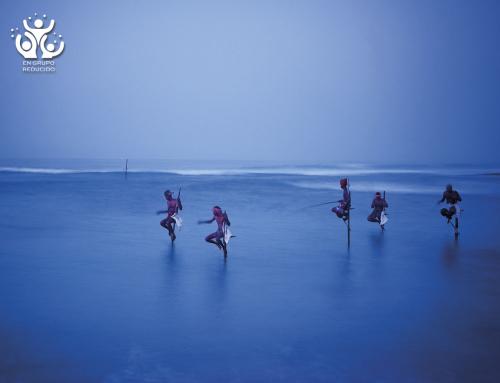 SRI LANKA, los mejores colores del verano