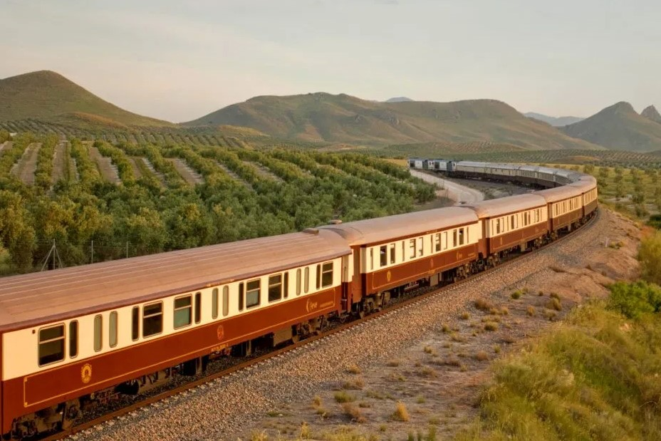 Viajar por España - Tren-al-andalus-olivos-en-linares